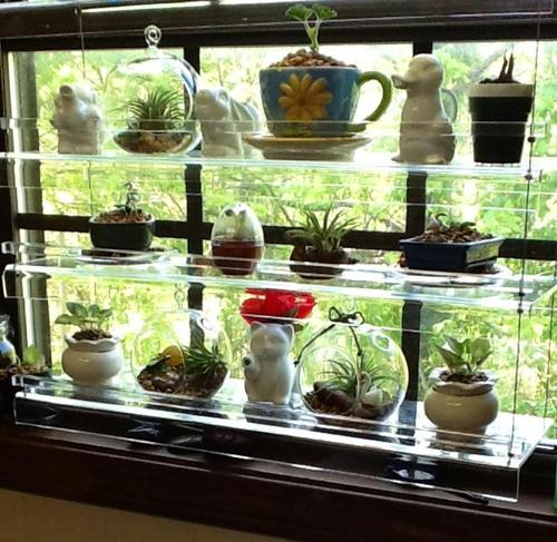 Kitchen Window Plant Shelf: Hanging Window Plant Shelves