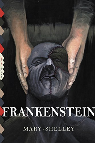 Mary Shelley - Frankenstein (Illustrated) (Top Five Classics Book 23)