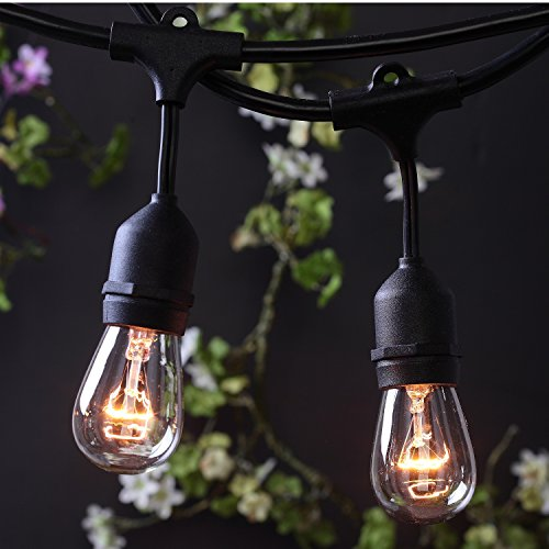 Long Hanging String Lights : Outdoor Commercial String Globe Lights 24 Feet Long with 12 Hanging Dropped Sockets- 12 S14 ...
