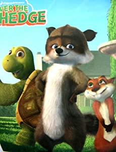 Amazon.com: Dreamworks Movie Character Blanket - Over The Hedge Buddies Throw: Toys & Games
