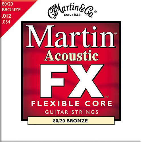 Martin Electric Acoustic Guitar