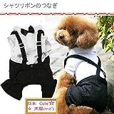 犬服 シャツリボンのつなぎ タキシード 3