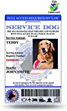 Why Us?  1.TSA Compliant: Our cards have been screened by TSA and meet all Government regulations.  2.Registry Ready: Each order Includes membership to U.S. Service Animal Registry. After Registration you will be given a registration number t...