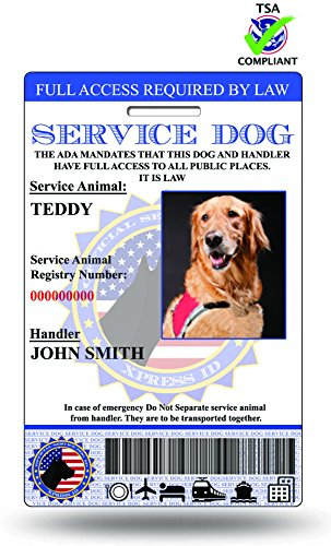 Holographic Service Dog ID Card (Custom) Includes Registration To National Dog Registry (Service Dogs Training compare prices)