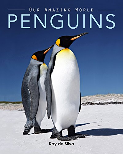 Penguins: Amazing Pictures & Fun Facts on Animals