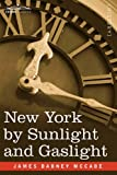 img - for New York by Sunlight and Gaslight: A Work Descriptive of the Great American Metropolis book / textbook / text book