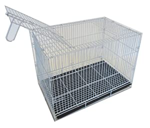 YML 20-Inch Small Animal Crate with Wire Bottom Grate and Black Plastic Tray, White