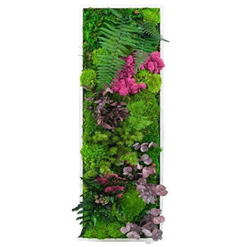 cadre-vegetal-nature-deco-25-x-115cm-ro-composes-de-plantes-naturelles-stabilisees-sans-aucun-entret