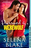 Pursued by a Werewolf (Mystic Isle, Book 4)