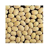 輸入大豆 カナダ産大豆 30kg