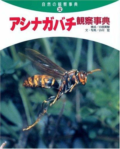 アシナガバチ観察事典