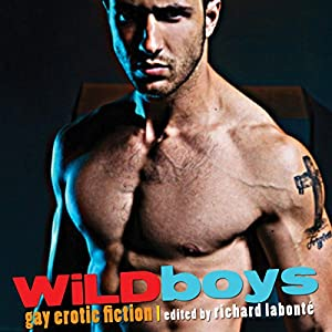 Wild Boys: Gay Erotic Fiction Audiobook