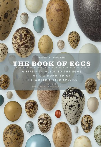The Book of Eggs: A Life-Size Guide to the Eggs of Six Hundred of the World's Bird Species - Mark E. Hauber