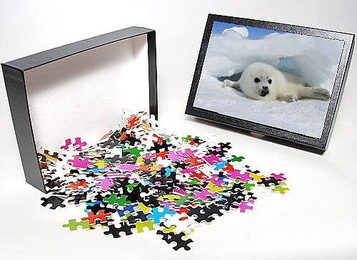 Photo Jigsaw Puzzle Of Harp Seal - Baby front-1056443