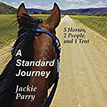 A Standard Journey Audiobook by Jackie Parry Narrated by Caroline Doughty