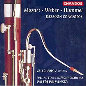 Bassoon Concerto in F Major, Op. 75, J. 127: II. Adagio