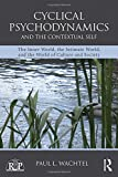 img - for Cyclical Psychodynamics and the Contextual Self: The Inner World, the Intimate World, and the World of Culture and Society (Relational Perspectives Book Series) book / textbook / text book