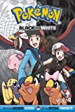 Pokémon Black and White, Vol. 4
