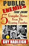 img - for Public Enemies: 5 True Crime Gangster Stories from the Roaring Twenties(Vol 1) book / textbook / text book