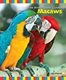 Julie Mancini Macaws (Birdkeepers' Guides)