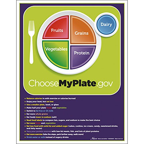Nasco WA29393 MyPlate TearPad with Food Group Tips, Pad of 50 Sheets, Reading Level Grades 4+ - 1