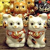【天然記念物】幸運を呼ぶ♪ちび招き猫 金三毛(ペア)