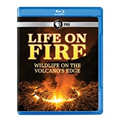 Life on Fire: Wildlife on the Volcanos Edge [Blu-ray]