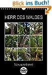 Herr des Waldes - Neuseeland (Wandkal...