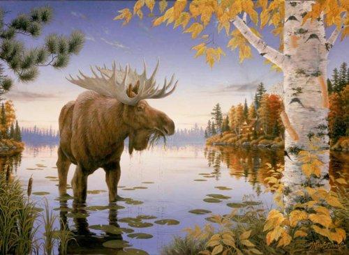 White Mountain Puzzles Majestic Moose