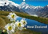 G. Streu New Zealand: New Zealand Most Beautiful Island in the World. (Calvendo Nature)