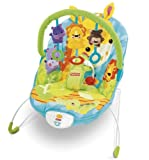 Fisher-Price Precious Planet Happy Giraffe Bouncer