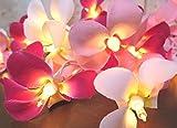 ハワイアン雑貨/インテリア プルメリアガーランドランプ (レッド&ホワイト) 【ハワイ雑貨】【お土産】