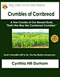 Crumbles of Cornbread (Easy Cheap Comfort Eats)