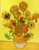 img - for Vincent van Gogh: Painting and Drawings book / textbook / text book