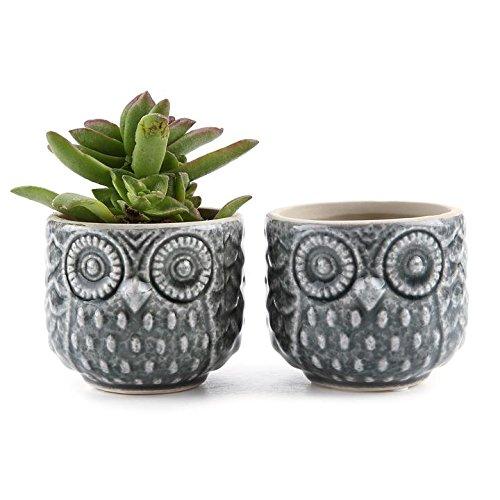 t4u-7cm-ceramic-owl-pattern-sucuulent-plant-pot-cactus-plant-pot-flower-pot-container-planter-grey-p