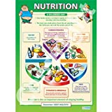 Nutrition PE Educational Wall ChartPoster in laminated paper A1 850mm x 594mm