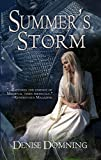 Summers Storm (The Seasons Series Book 2)