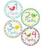 Baby Girl Bird Monthly Onesie Sticker With Chevron Pattern - Waterproof And Durable - Includes 1-12 Month Stickers...