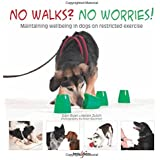 No walks? No worries! - Maintaining wellbeing for dogs on restricted exercise