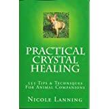Practical Crystal Healing 555 Tips & Techniques For Animal Companions