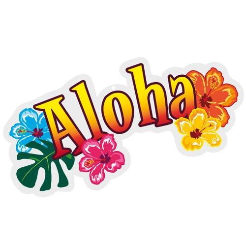 Aloha Hawaii-Dekoration