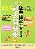 社会福祉士国試対策過去問題集 2017 共通科目編 (合格シリーズ)