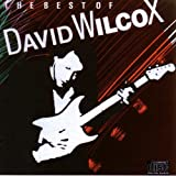 The Best Of David Wilcoxby David Wilcox