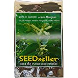 SEED Seller: Acacia Mangium Seeds For Growing - Mangium An Economically Important Major Plantation Species, Fast Growing Timber Mainly Used For Paper Pulp, Biomass Fuel Industries