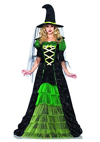 2 Piece Storybook Witch Costume