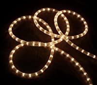 27' Clear Indoor/Outdoor Christmas Rope Lights - 8 Functions from Vickerman