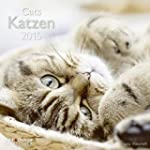 Katzen 2015 A&I