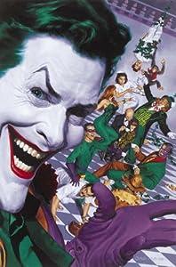 Amazon.com: Batman Villains Poster Joker Riddler Two-face