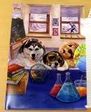 ◆小さな科学者◆かわいい犬のシングルクリアホルダー☆HenryDogs