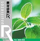 素材辞典[R]024 新緑と若葉